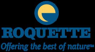 logo roquette